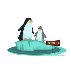 Penguin zoo animal and wooden signboard vector