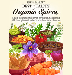 Poster of organic spices and herbs vector