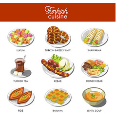 turkish cuisine food and traditional dishes vector image
