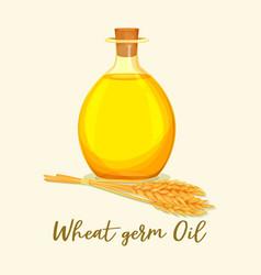 Wheat germ oil in glassware bottle near ear vector