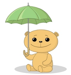 teddy bear and umbrella vector image
