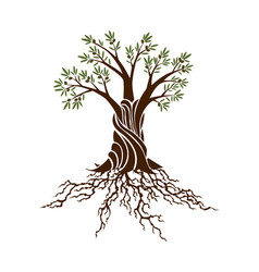 Abstract green tree with strong plant roots vector