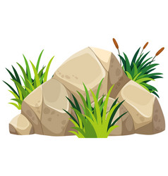 brown rock with green grass on top vector image