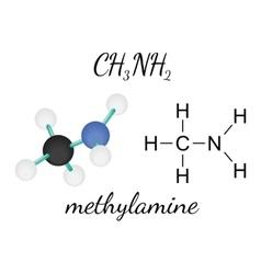 CH3NH2 methylamine molecule vector image
