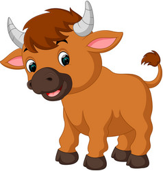 Cute bull cartoon vector