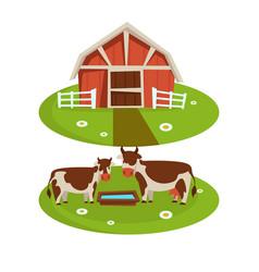 Farm house barn or farmer agriculture and cattle vector