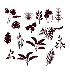 forest bush and grass silhouette set vector image