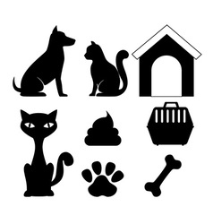 Pet design vector image