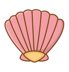 Pink shell cartoon vector