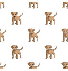 Puppy labradoranimals single icon in cartoon vector