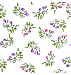 seamless pattern with sweet pea vector image
