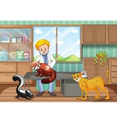 Vet healing wild animals in clinic vector