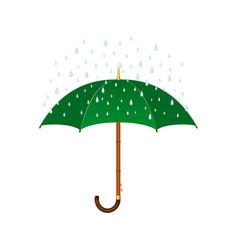 Umbrella in green design and rain vector