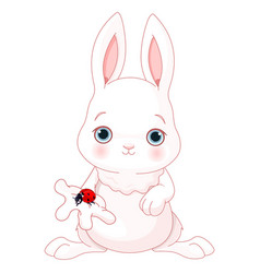 cute bunny holds lady bug vector image vector image