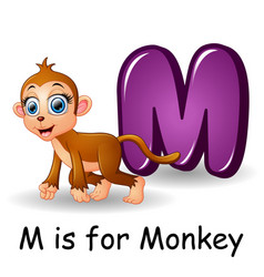Animals alphabet m is for monkey vector