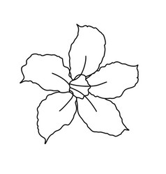 Beautiful adenium flower line art one line art vector
