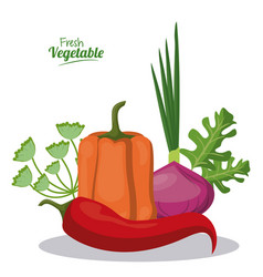 Fresh vegetable pepper onion lettuce menu vector
