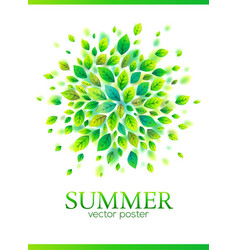 green leaves splash summer poster vector image