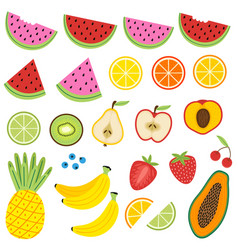 set isolated fruits vector image