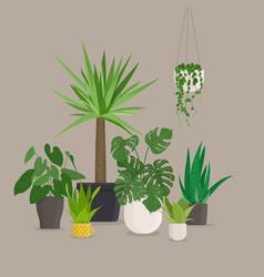 set of green indoor house plants in pots vector image