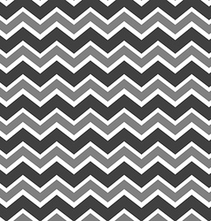 Chevron grey and white vector image vector image