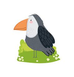 cute toucan bird vector image