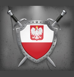 Flag of poland with eagle the shield with vector