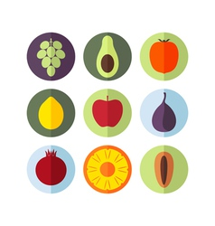 Fruits Icon Set vector image vector image