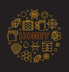 honey round outline on dark vector image