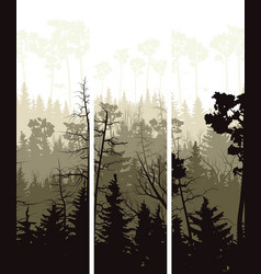 Vertical banners of coniferous wood vector