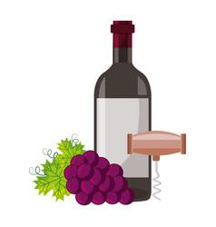 wine bottle corkscrew grapes vector image