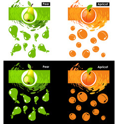 set template of pear and apricot fruit vector image vector image