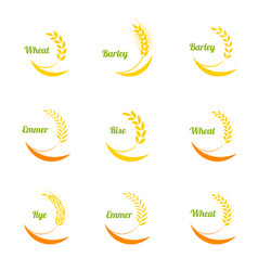wheat ears icons set vector image