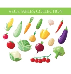 Set of vegetables icons Flat style design vector image vector image