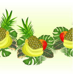 border seamless background tropical fruit vector image
