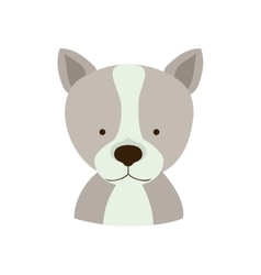 Dog animal cartoon vector