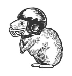 hamster in football helmet engraving vector image