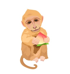 monkey holding a peach vector image
