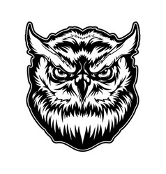 Owl animal head with angry face mascot vector