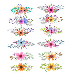 watercolor collection with leaves and flowers vector image