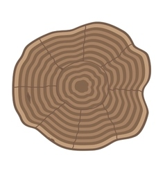Tree slices isolated vector image
