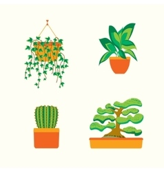 Green Plants for Home or Office vector image