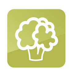 Cauliflower outline icon vegetable vector