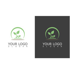 circle green leaf logo vector image