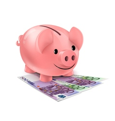 Piggy bank and fan of euro banknotes vector image
