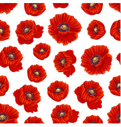 Spring poppy flower seamless pattern background vector