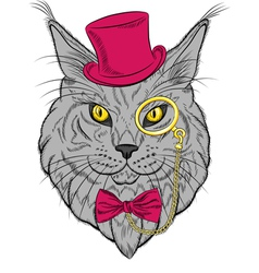 funny Maine Coon cat hipster vector image vector image