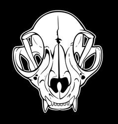 Anatomical drawing an animal skull vector