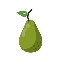Avocado health diet icon vector