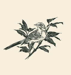 Bird on branch engraving linocut style vector